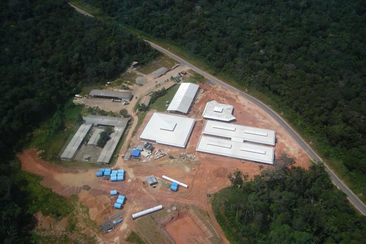 Amazonia 17
